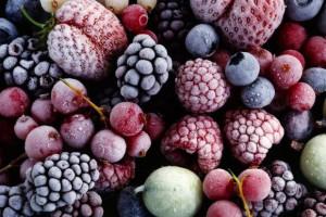 Кабмин планирует расширить дотации на импортные холодильники для ягод